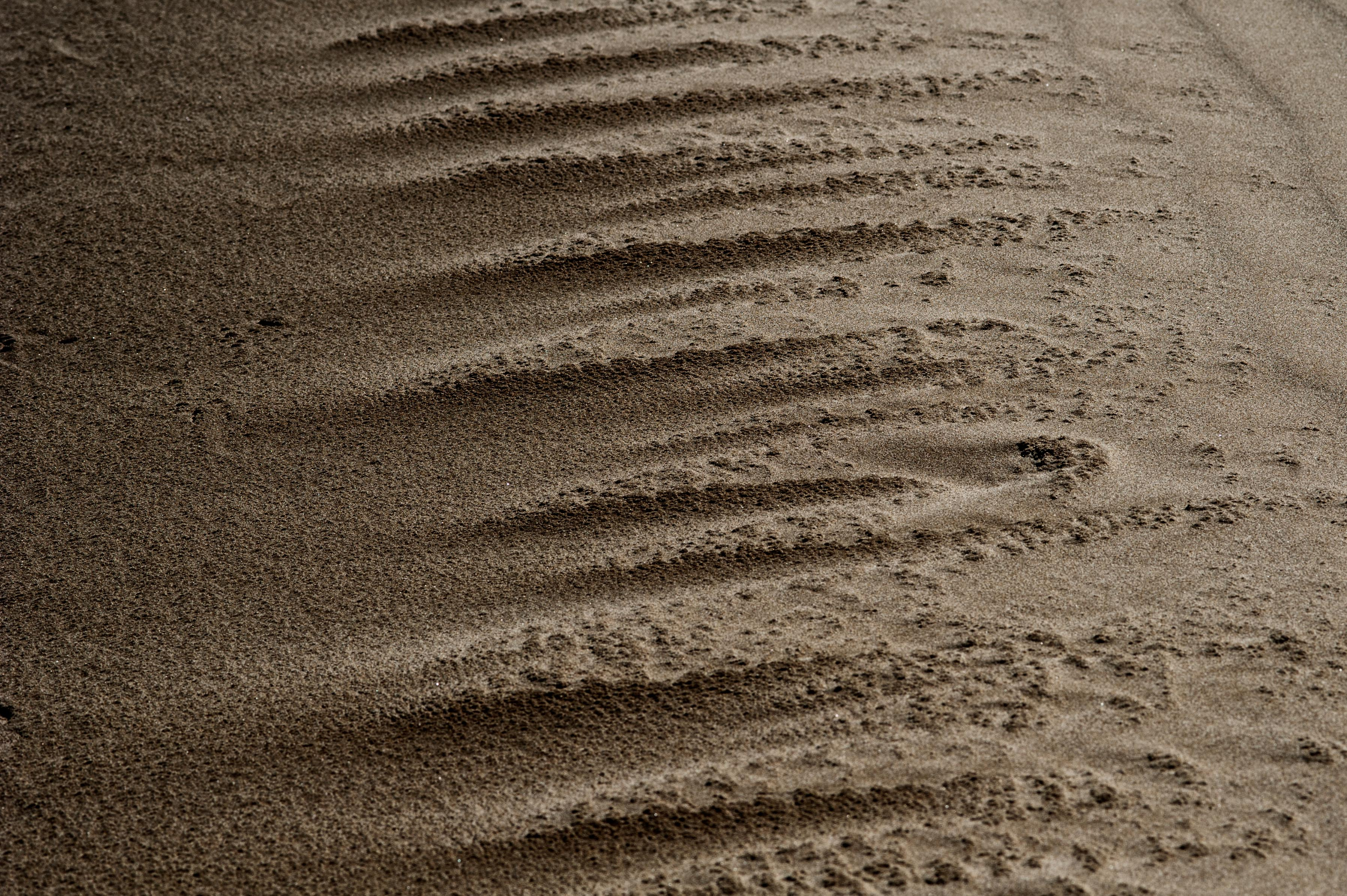 Picture of sand by vincent turin
